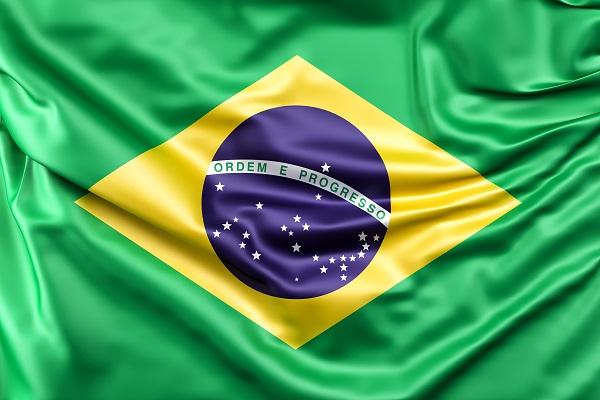 Transplante capilar Brasil